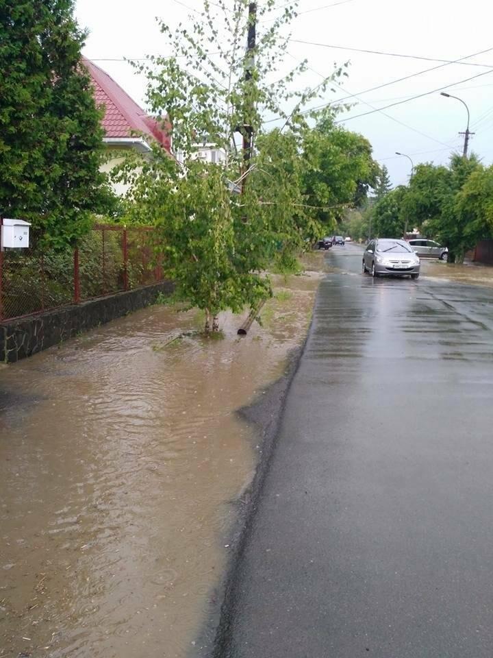 В Ужгороді сильна злива затопила дороги і тротуари: фото, відео, фото-5