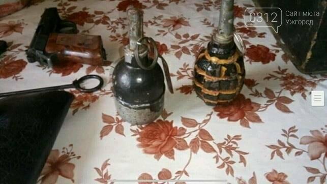 На Воловеччині чоловік у вітальній ховав 3 пістолети, гранати та ракетницю: фото , фото-3