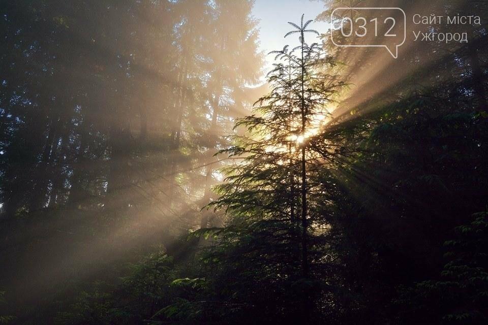 Краса Карпат: фотографії ужгородки з подорожі Чорногорою та Горганами, фото-12
