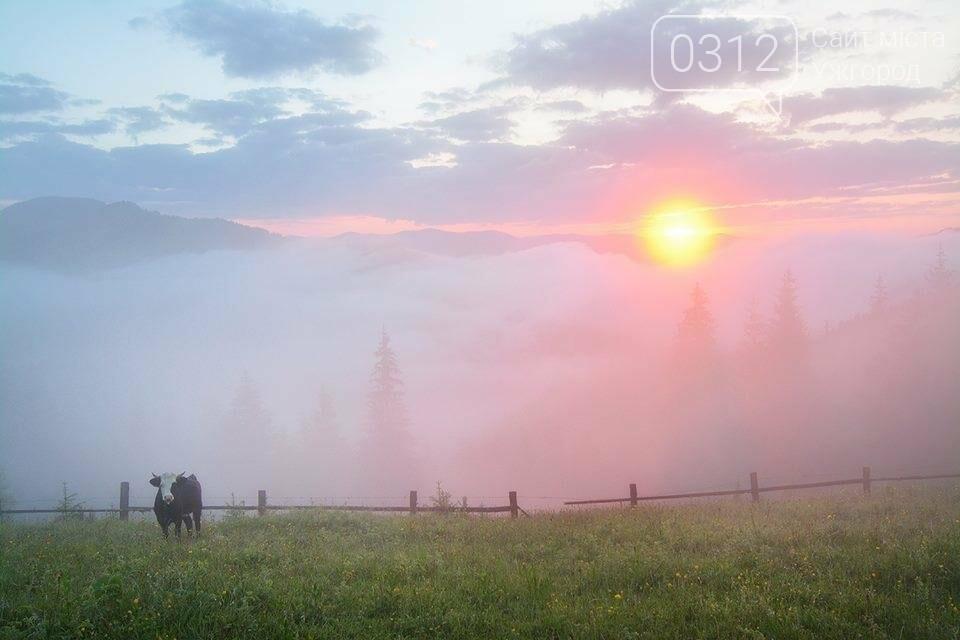 Краса Карпат: фотографії ужгородки з подорожі Чорногорою та Горганами, фото-6
