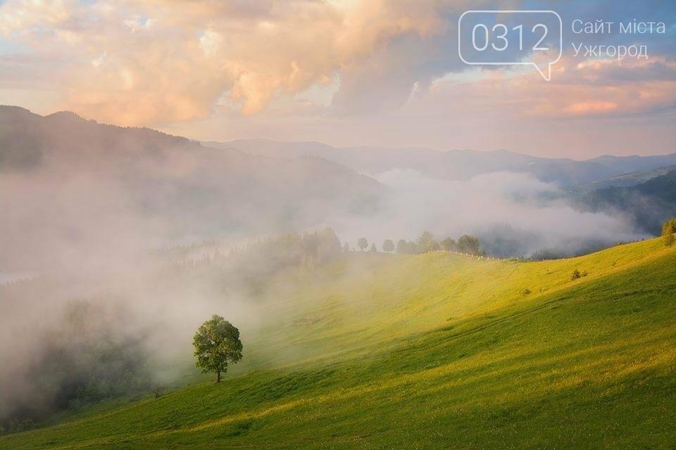 Краса Карпат: фотографії ужгородки з подорожі Чорногорою та Горганами, фото-7