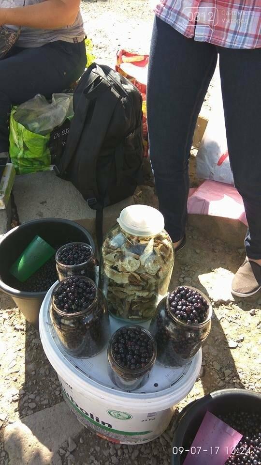 В Ужгороді вже продають яфини - 50 гривень за літр: фото, фото-1