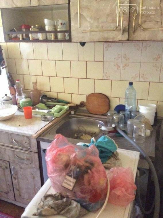 Тиждень не з'являлася вдома: у жінки з Мукачева поліція забрала 6-х дітей (ФОТО), фото-5