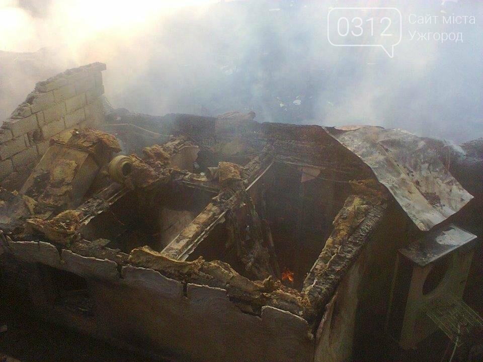 У селі Ужок пожежу гасили 17 рятувальників - ресторан згорів повністю: фото, фото-3