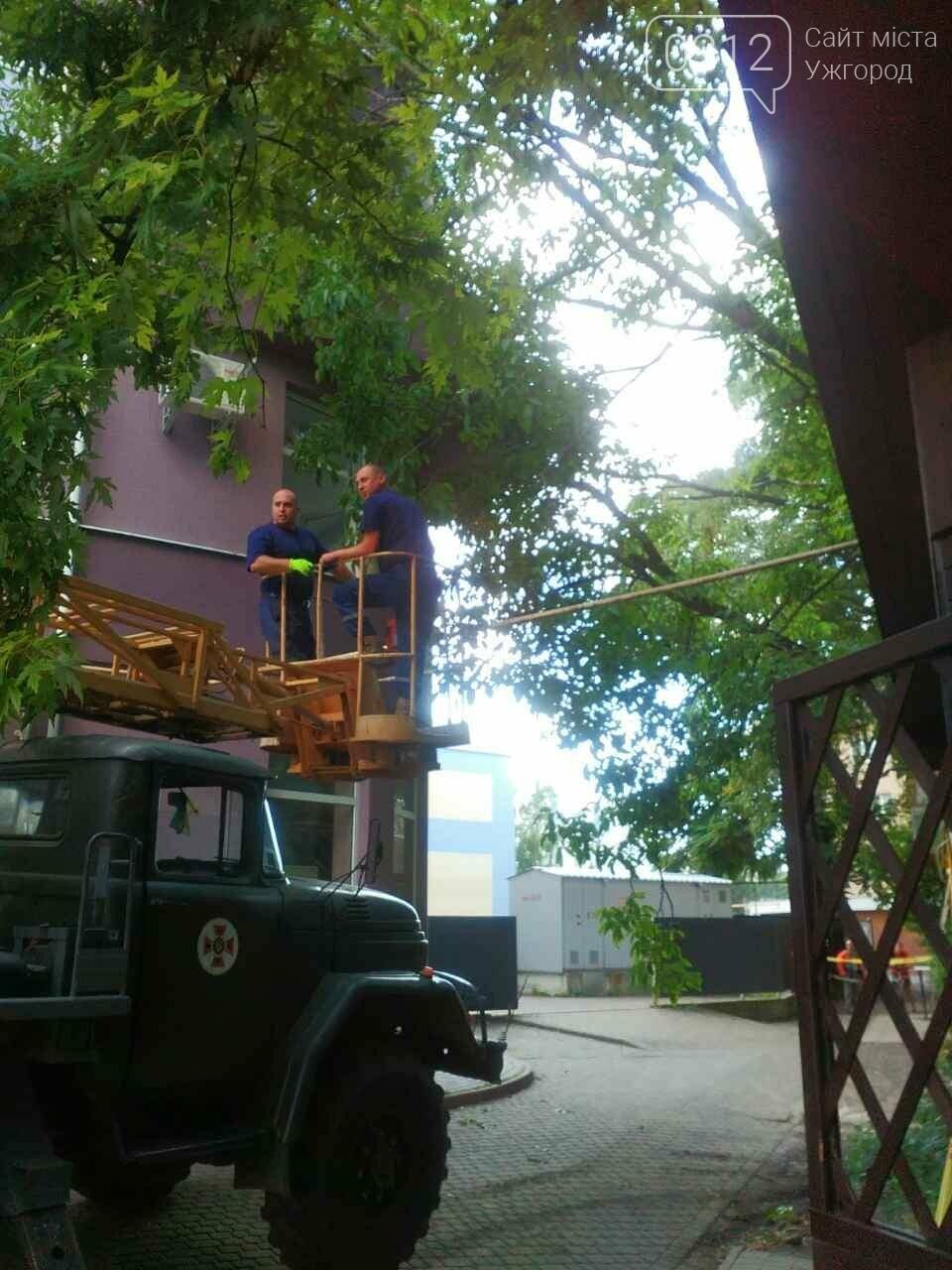 В Ужгороді на Швабській дерево упало на газопровід: фото, фото-2