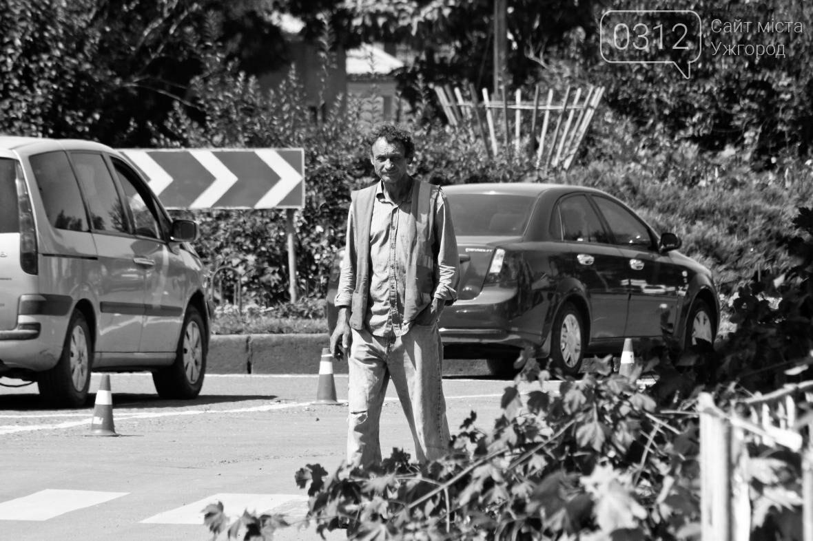 Як на площі Дружби Народів дерева зрубували: фоторепортаж, фото-5