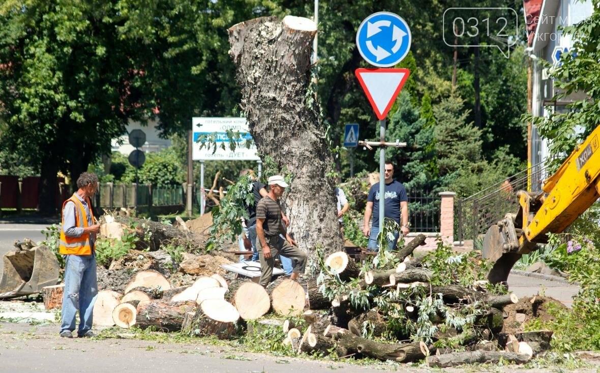 Як на площі Дружби Народів дерева зрубували: фоторепортаж, фото-13