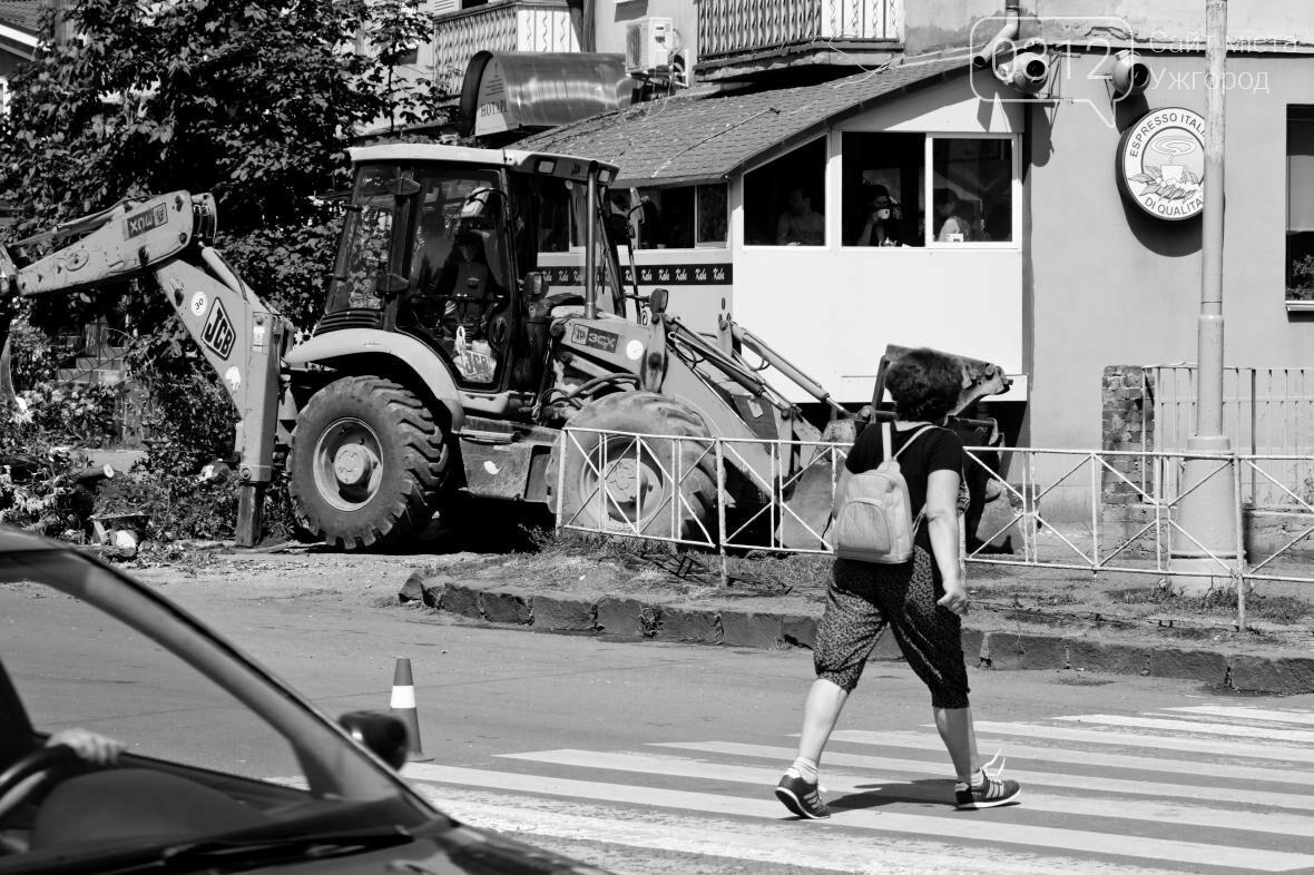 Як на площі Дружби Народів дерева зрубували: фоторепортаж, фото-10