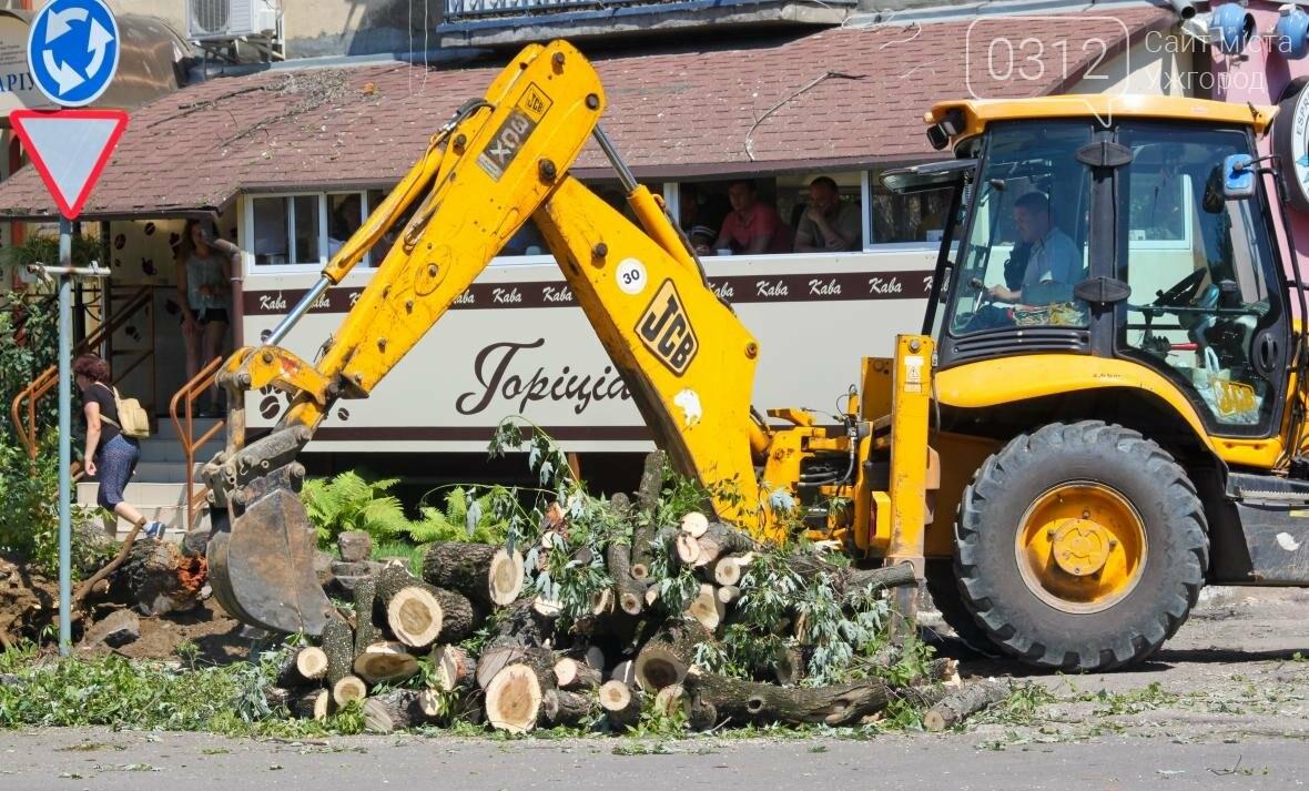Як на площі Дружби Народів дерева зрубували: фоторепортаж, фото-4