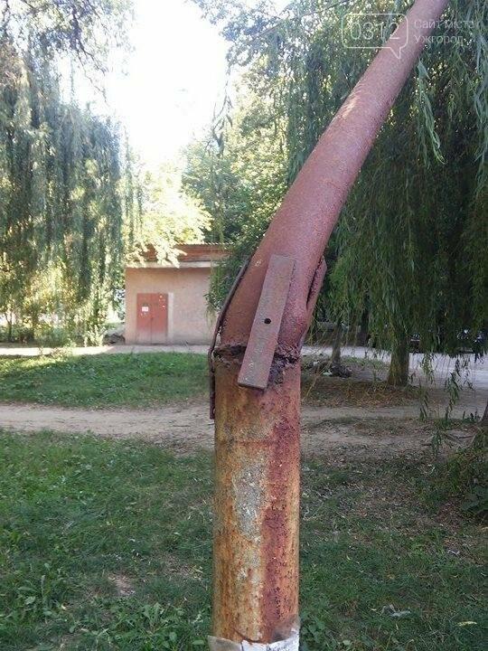 """В Ужгороді біля """"Проліска"""" кабель, що живить світлом багатоповерхівки, держиться на вербі: фото, фото-1"""
