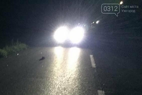 Смертельна ДТП на Ужгородщині: у селі Сюрте Volkswagen переїхав жінку (ФОТО), фото-1