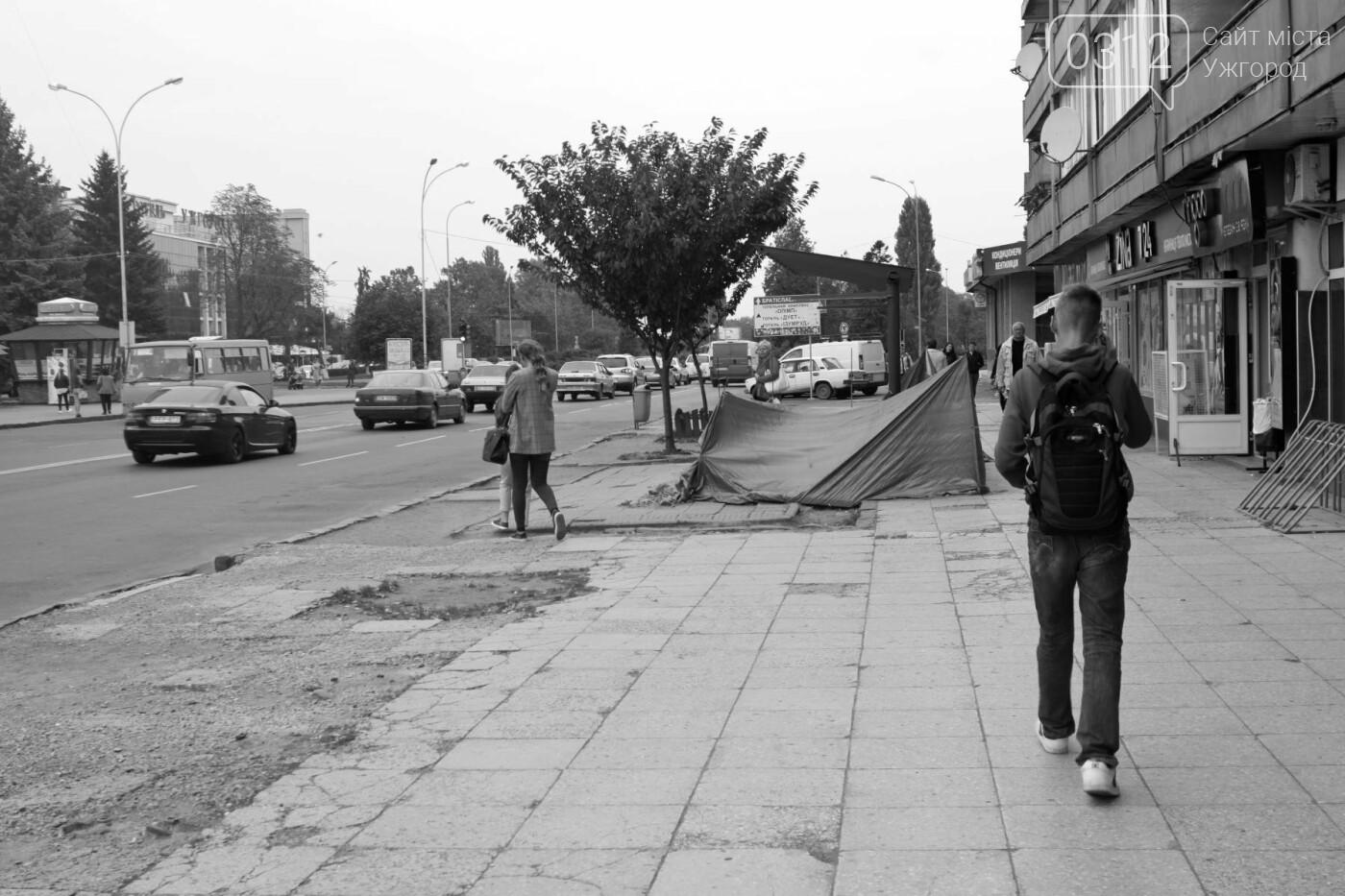 Нові зупинки в Ужгороді будуть до неділі, а вай-фай - за 3 тижні, фото-8