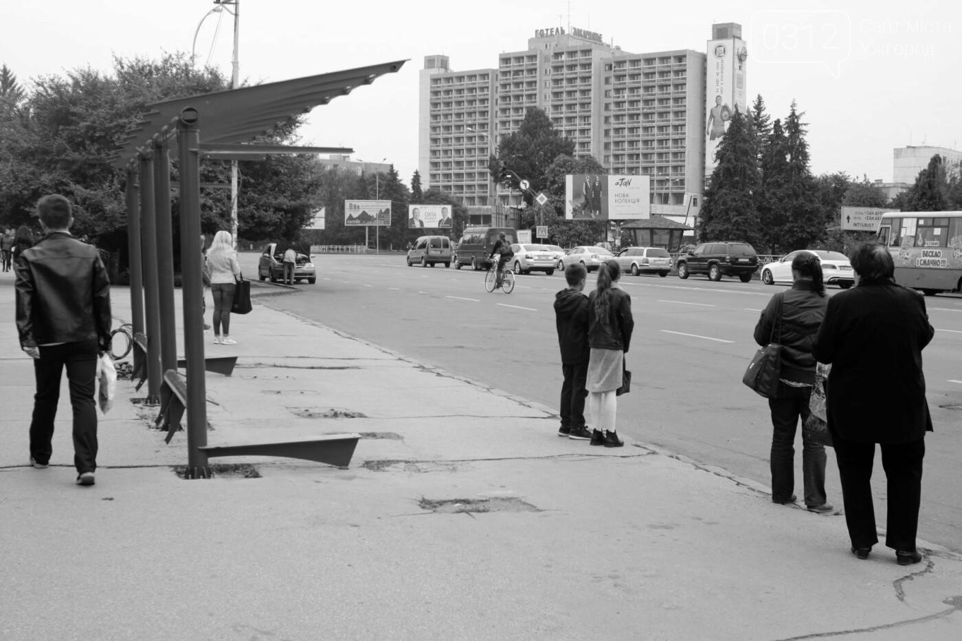 Нові зупинки в Ужгороді будуть до неділі, а вай-фай - за 3 тижні, фото-7