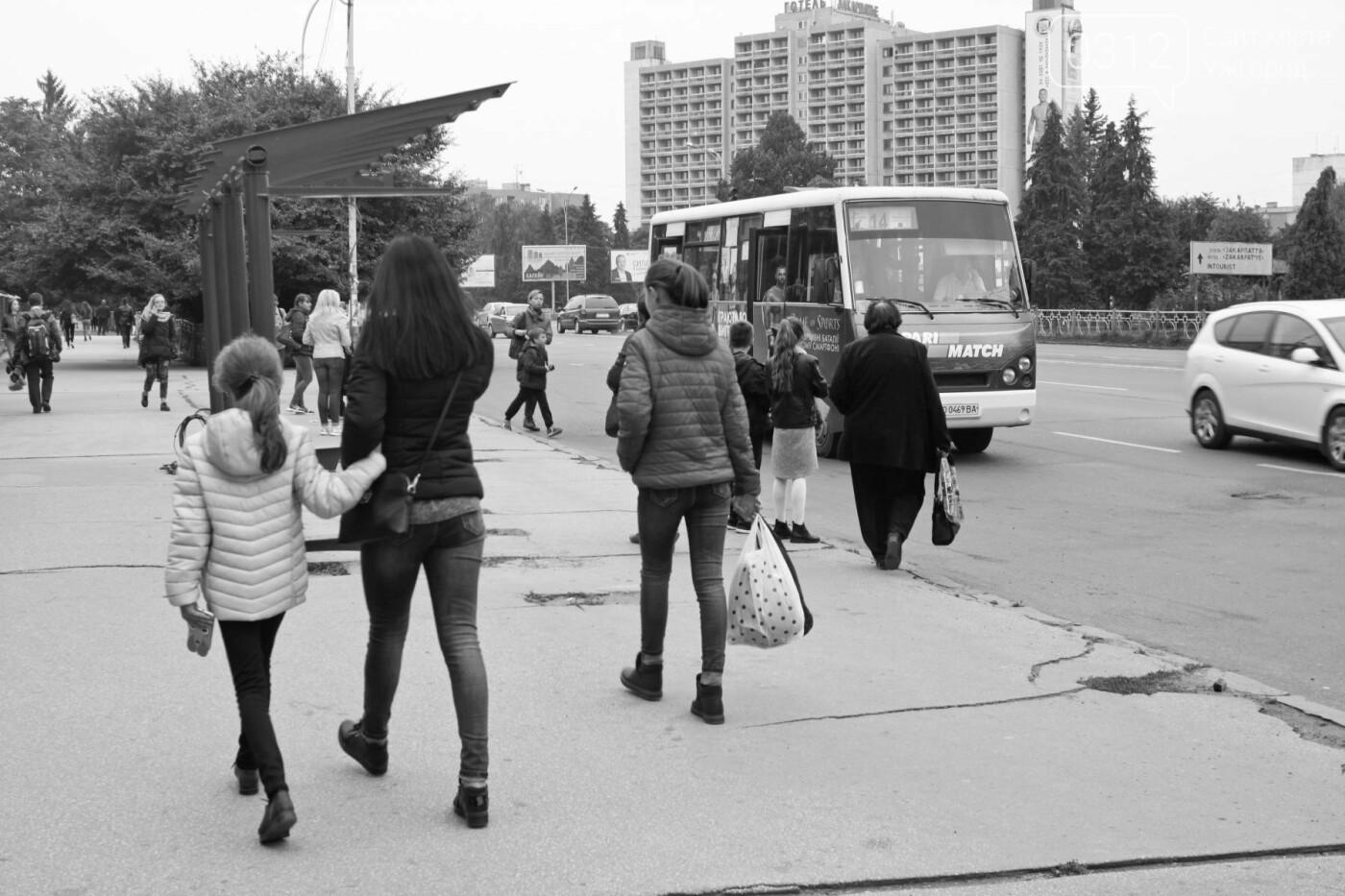 Нові зупинки в Ужгороді будуть до неділі, а вай-фай - за 3 тижні, фото-5
