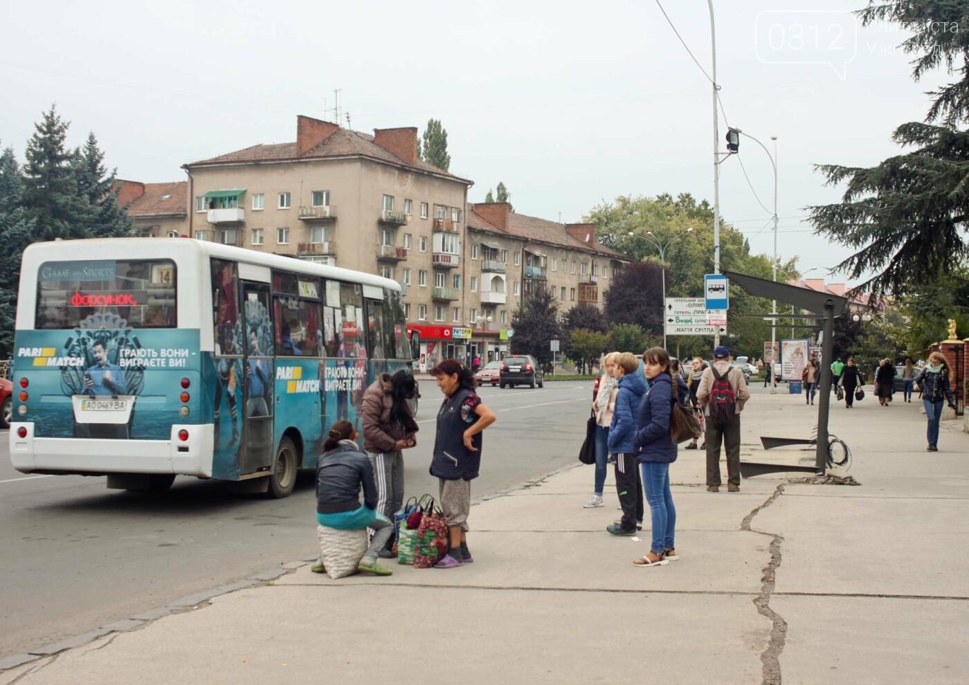 Нові зупинки в Ужгороді будуть до неділі, а вай-фай - за 3 тижні, фото-3
