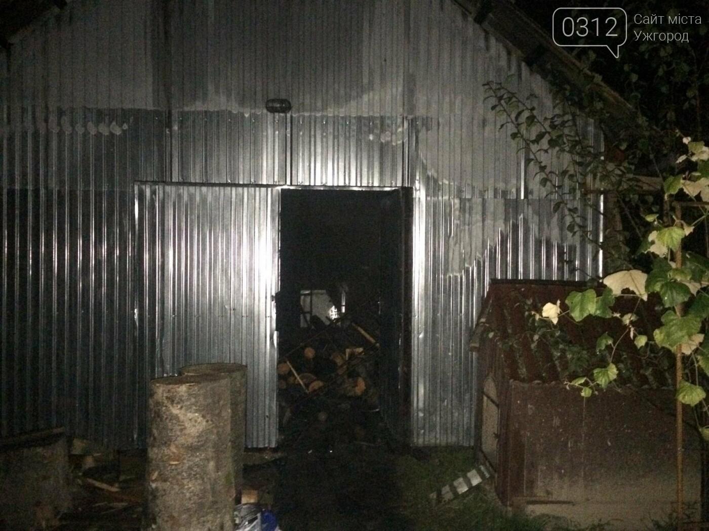 Пожежу на Свалявщині гасили 10 рятувальників на 3-х машинах: фото, фото-1