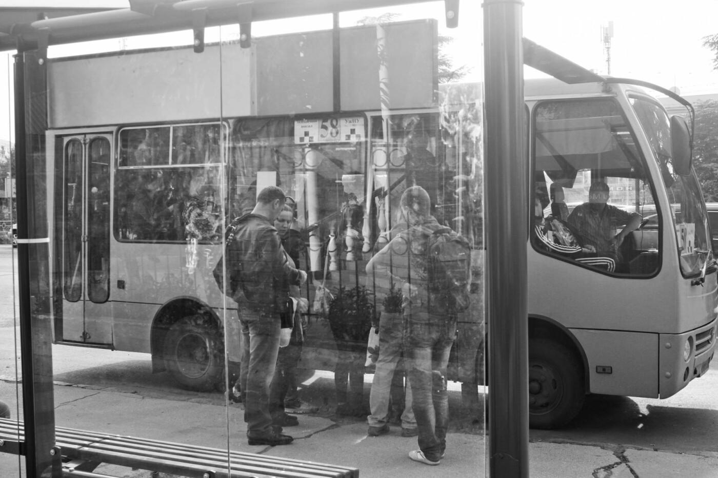 Антивандальне скло та відеоспостереження: чим дивуватимуть нові зупинки в Ужгороді? (ФОТОРЕПОРТАЖ), фото-14