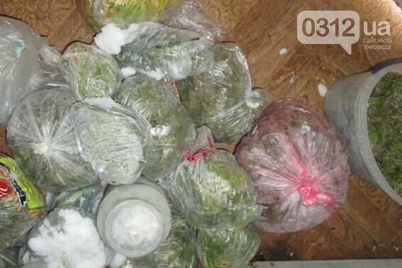 У мешканця Хустщини під час обшуків знайшли 4,5 кілограми наркотиків: фото, фото-2