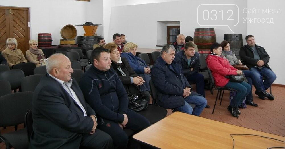 """""""Закарпатське божоле"""": в Ужгороді на фестивалі продаватимуть 5 підприємців-харчовиків, які заплатять по 15-20 тисяч за місце, фото-2"""