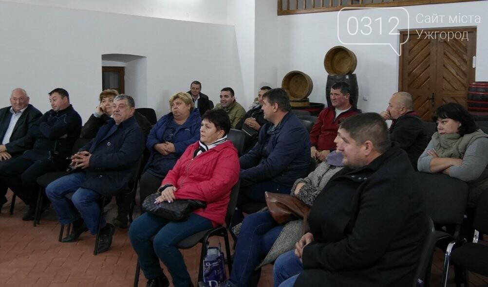 """""""Закарпатське божоле"""": в Ужгороді на фестивалі продаватимуть 5 підприємців-харчовиків, які заплатять по 15-20 тисяч за місце, фото-1"""