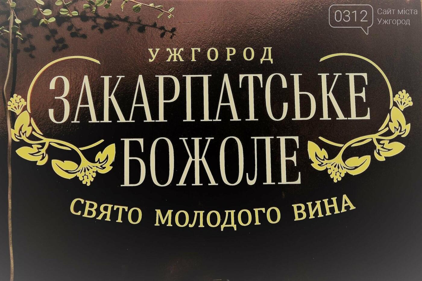 Ужгород п'є молоде вино: фоторепортаж, фото-1