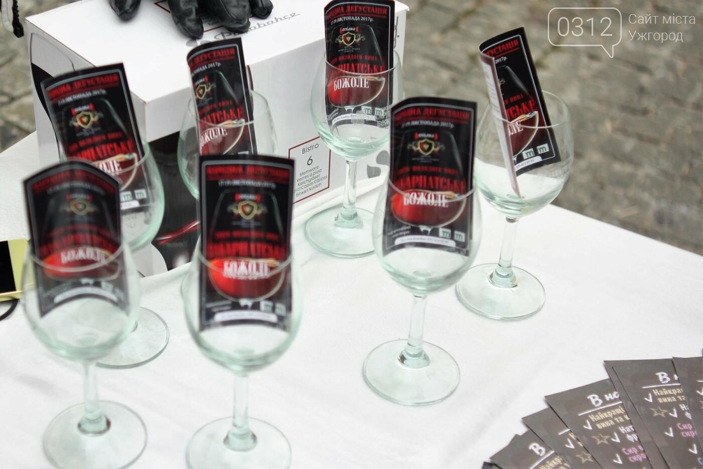 Ужгород п'є молоде вино: фоторепортаж, фото-3
