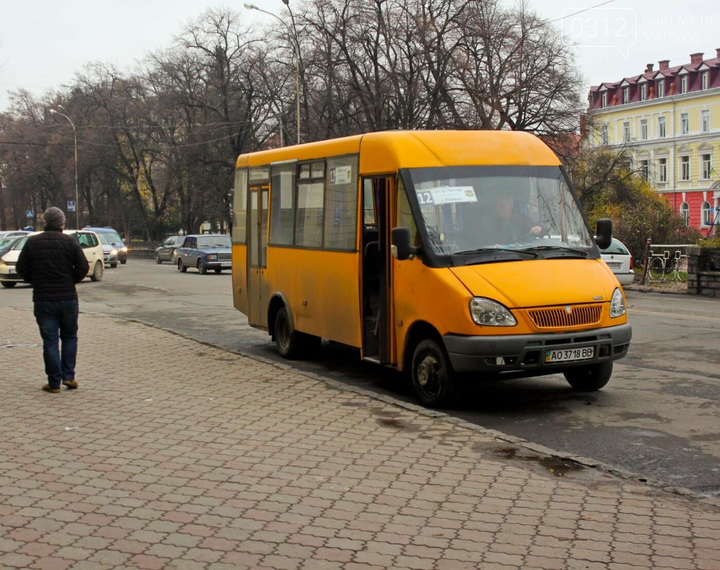 Водії ужгородських «маршруток» розповіли, чому не впускають школярів без учнівського квитка: фоторепортаж , фото-1