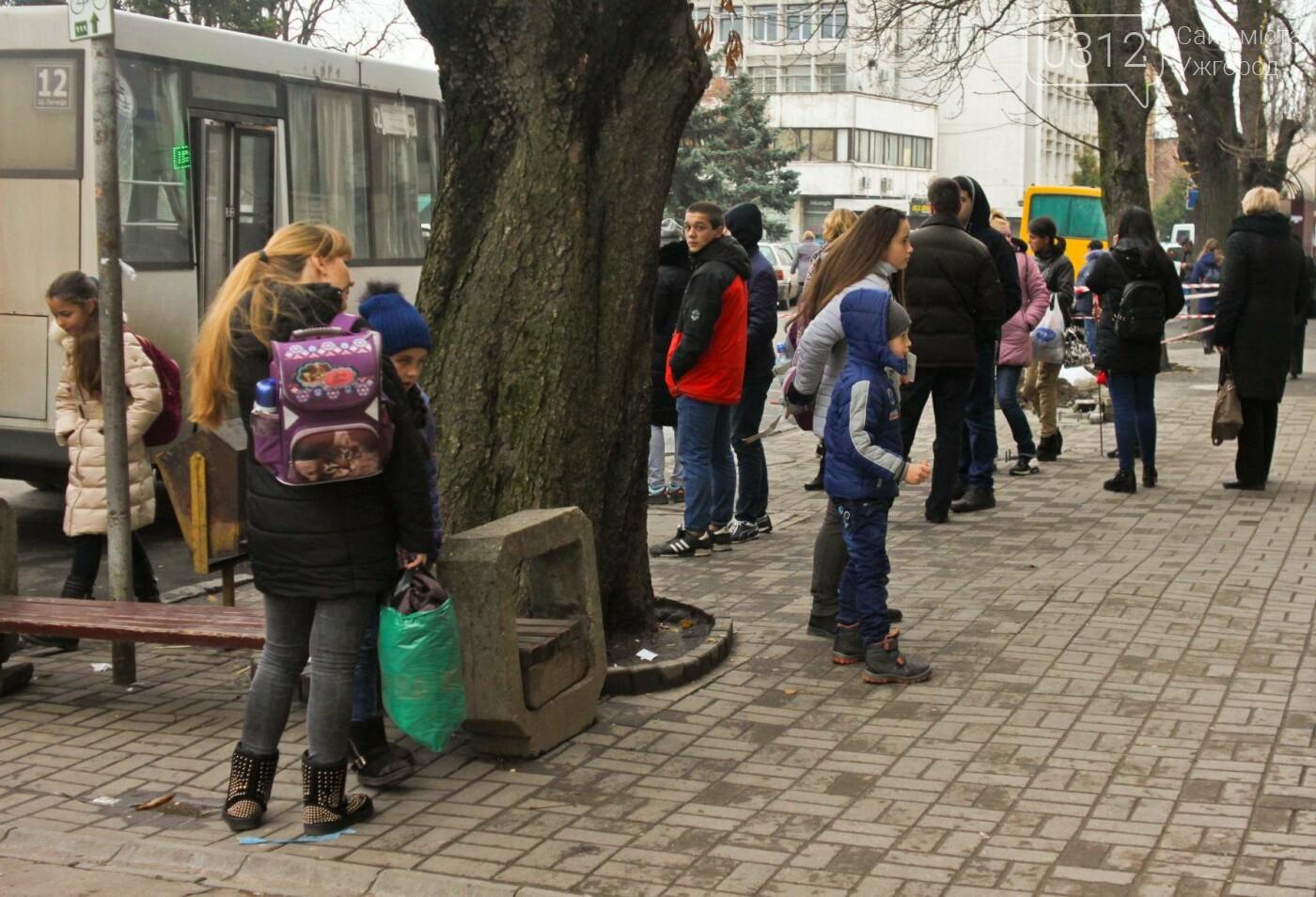 Водії ужгородських «маршруток» розповіли, чому не впускають школярів без учнівського квитка: фоторепортаж , фото-3
