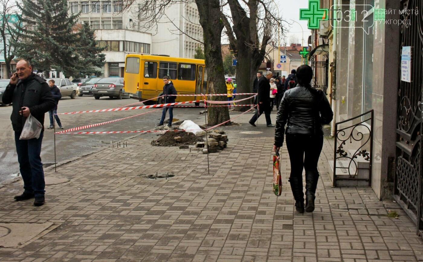 Водії ужгородських «маршруток» розповіли, чому не впускають школярів без учнівського квитка: фоторепортаж , фото-7