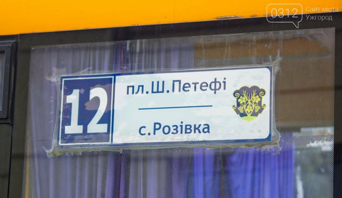 Водії ужгородських «маршруток» розповіли, чому не впускають школярів без учнівського квитка: фоторепортаж , фото-8