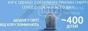Кір в Україні: все про хворобу від ужгородського лікаря-інфекціоніста, фото-1