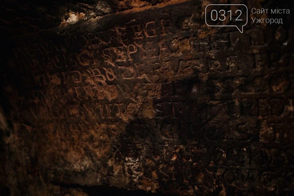 Як виглядає атмосфера винних підвалів у Середньому: фото, фото-6