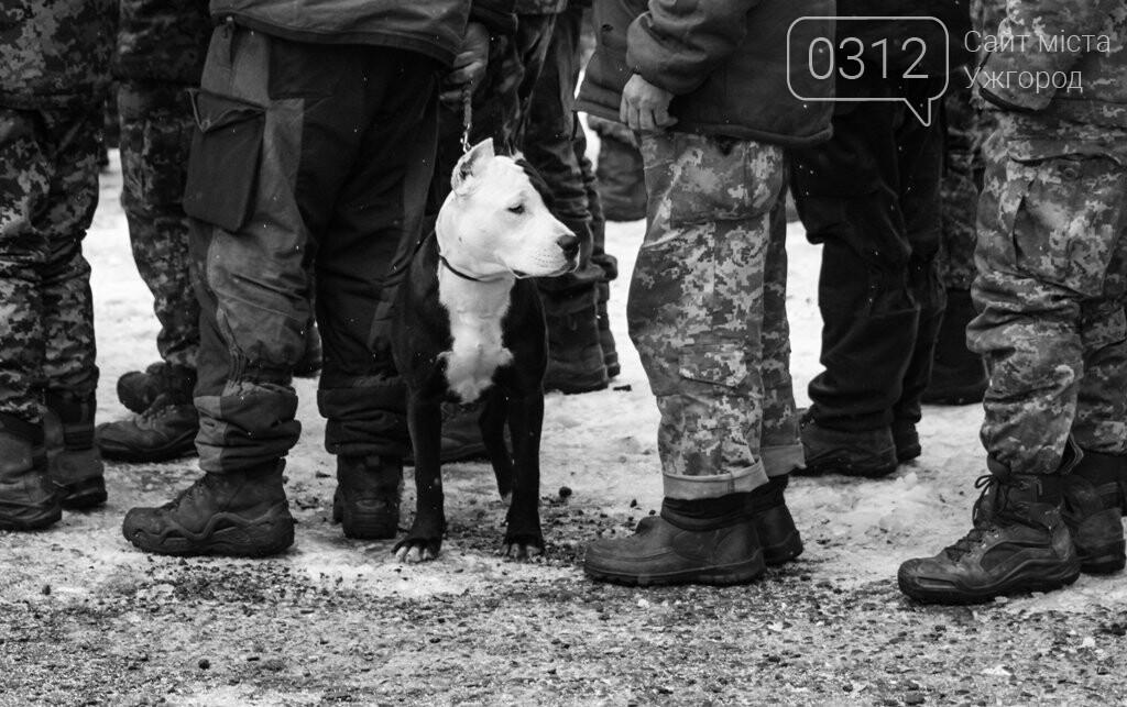 Вони обороняли позиції за 100 метрів від ворога: в Ужгороді зустріли 2-й гірсько-піхотний батальйон 128-ї бригади (ФОТОРЕПОРТАЖ), фото-23