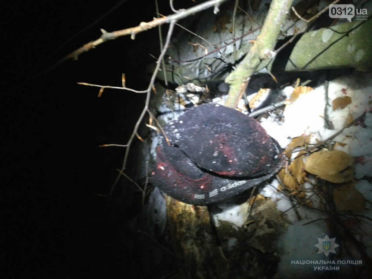 Трагедія на Іршавщині: на селян упало дерево, один чоловік загинув на місці, другий - у реанімації (ФОТО), фото-1