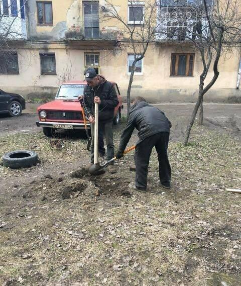 В Ужгороді на Станційній та Одеській вулицях висадили 50 дерев - сакур та лип (ФОТО), фото-3