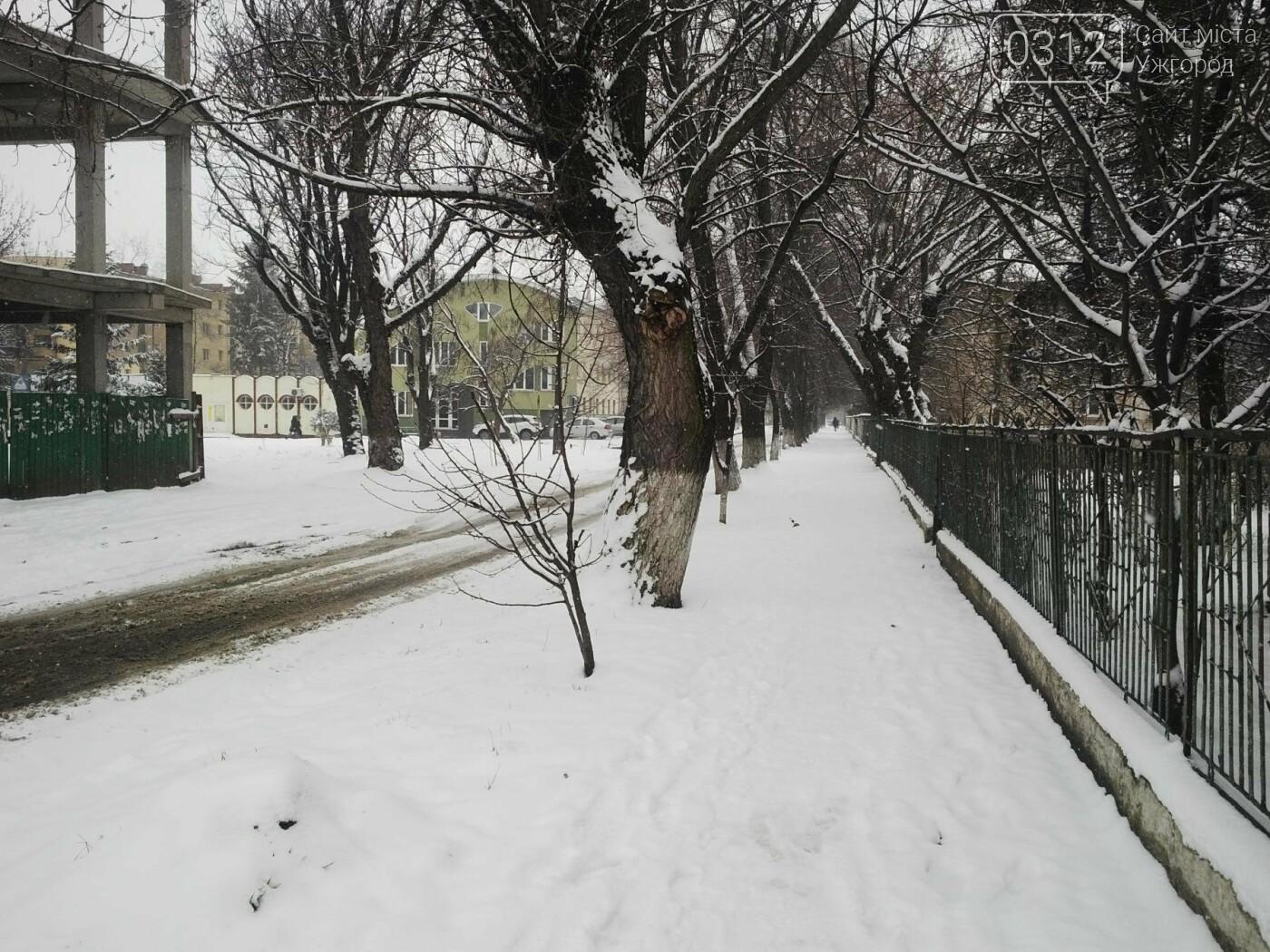 Ужгород - наодинці зі снігом: тротуари не розчищені та непідсипані, у двори не ступала нога комунальника (ФОТОРЕПОРТАЖ), фото-4