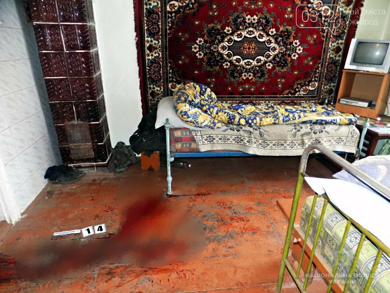 Шокуюче вбивство на Міжгірщині: чоловік зарубав сокирою свого приятеля (ФОТО), фото-1
