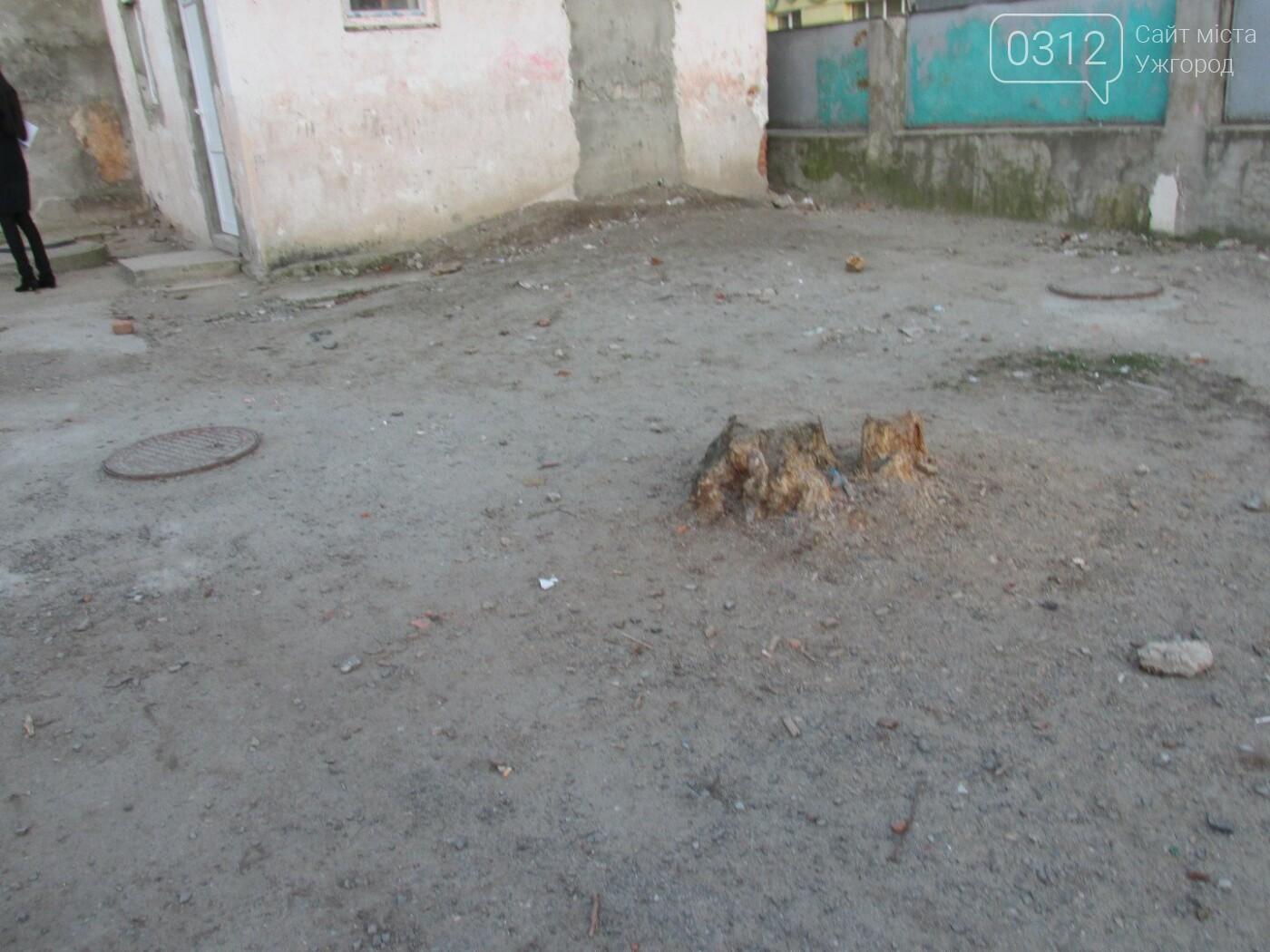 ТОП-20 громадських проектів, які не залишили ужгородців байдужими (СТАТИСТИКА на 27.03.2018), фото-22