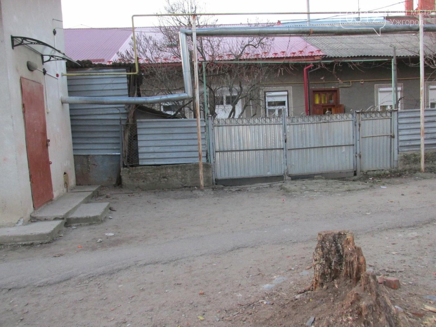 ТОП-20 громадських проектів, які не залишили ужгородців байдужими (СТАТИСТИКА на 27.03.2018), фото-23