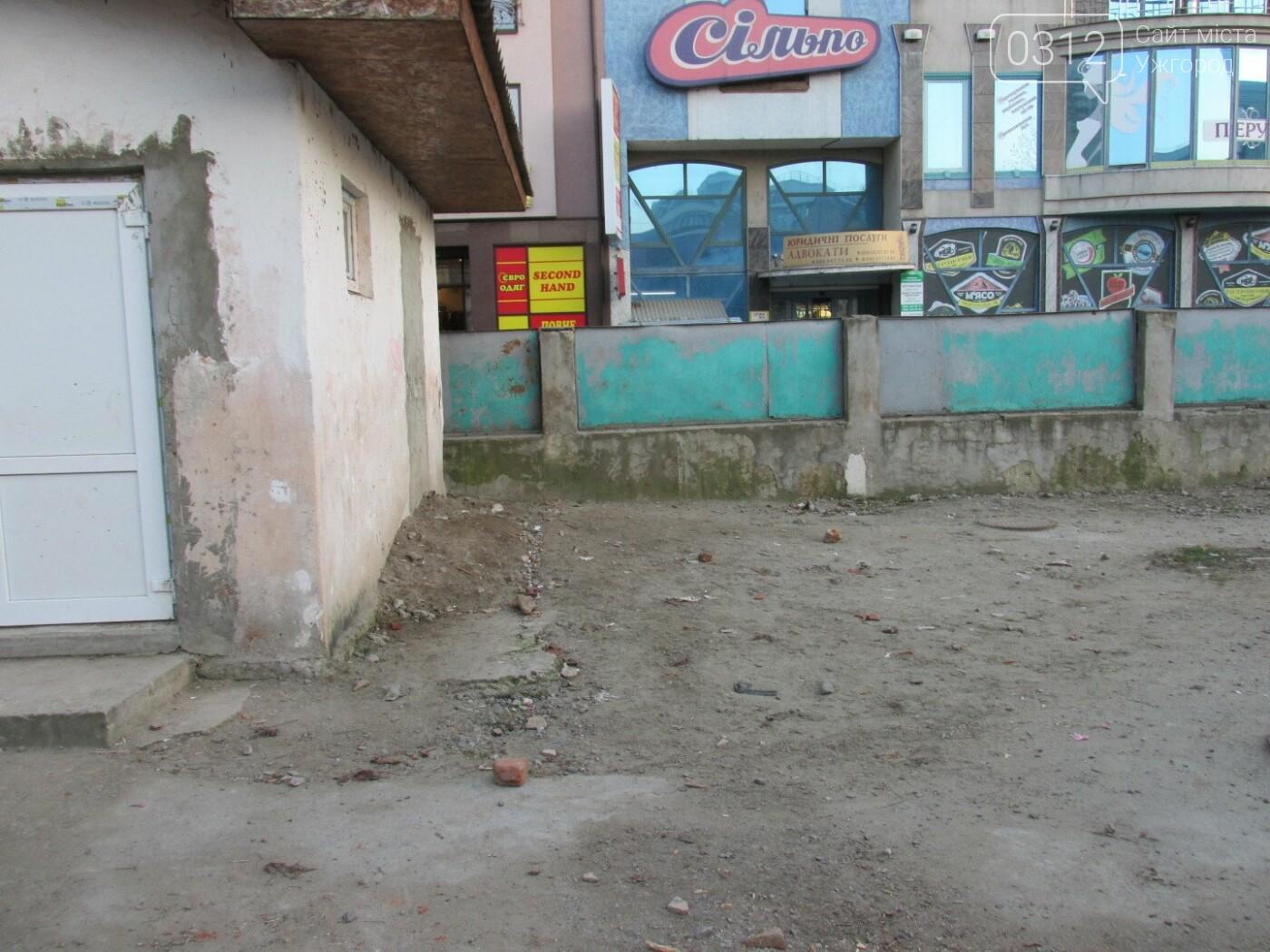 ТОП-20 громадських проектів, які не залишили ужгородців байдужими (СТАТИСТИКА на 27.03.2018), фото-24