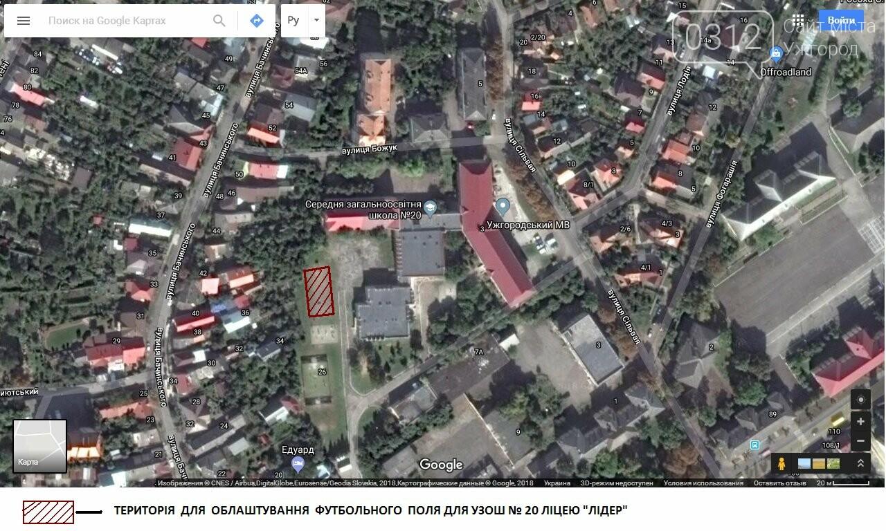 ТОП-20 громадських проектів, які не залишили ужгородців байдужими (СТАТИСТИКА на 27.03.2018), фото-2