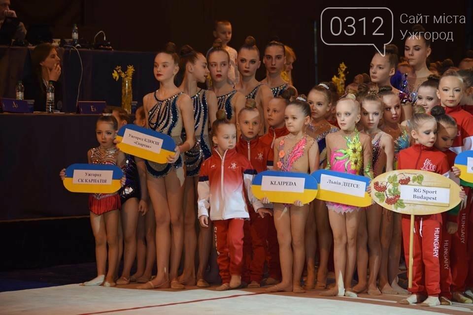 Свято спорту та грації: В Ужгороді стартував кубок Закарпаття з художньої гімнастики (ФОТО), фото-3