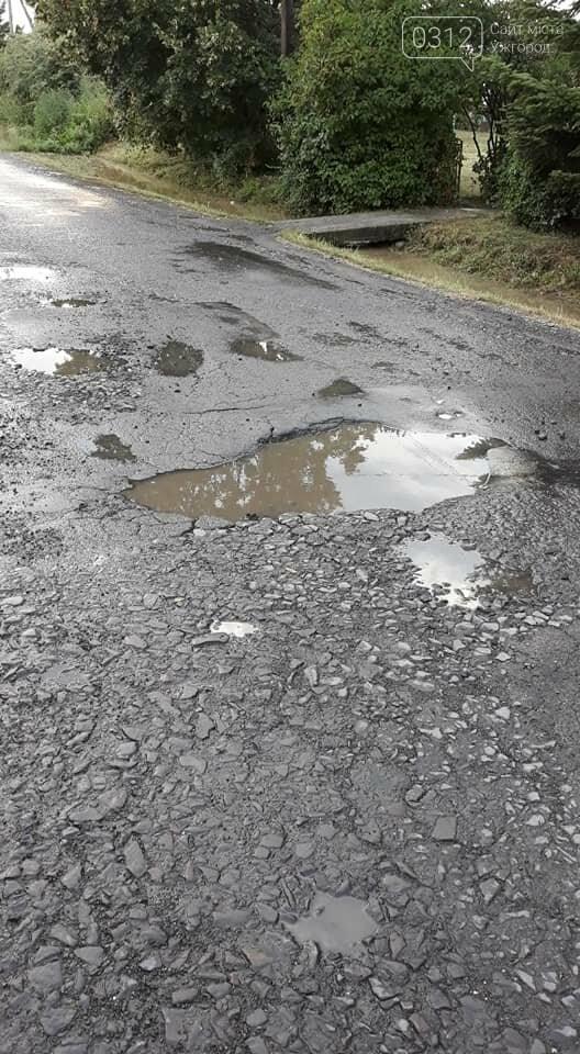 Ужгородці скаржаться на вулицю Лисенка, яка щоразу після дощу в жахливому стані (ФОТО, ВІДЕО), фото-4