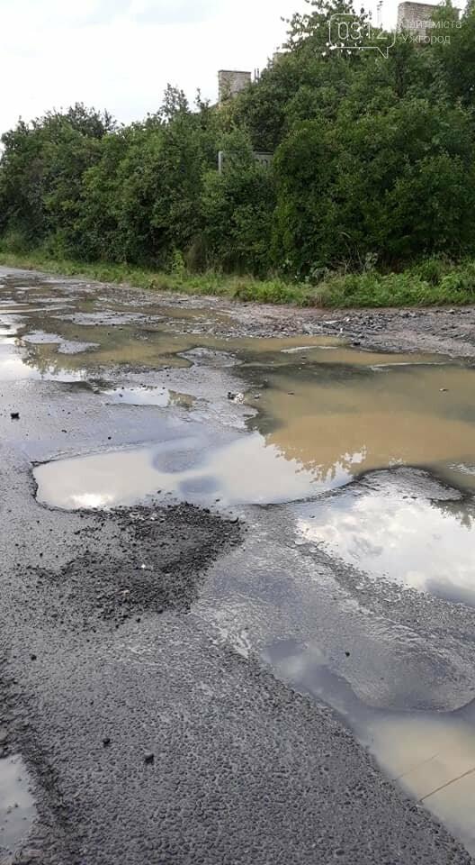 Ужгородці скаржаться на вулицю Лисенка, яка щоразу після дощу в жахливому стані (ФОТО, ВІДЕО), фото-6