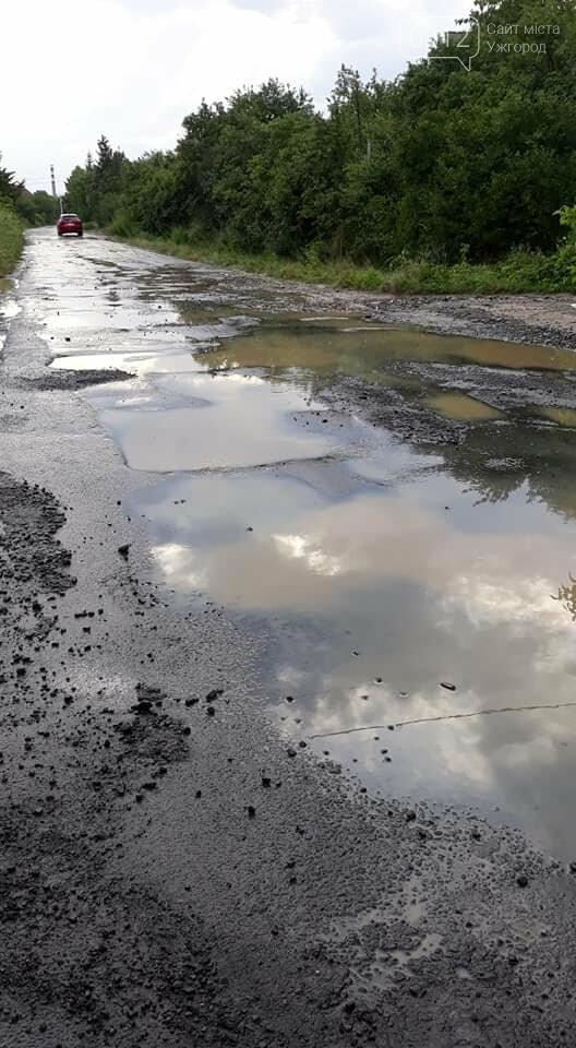 Ужгородці скаржаться на вулицю Лисенка, яка щоразу після дощу в жахливому стані (ФОТО, ВІДЕО), фото-5