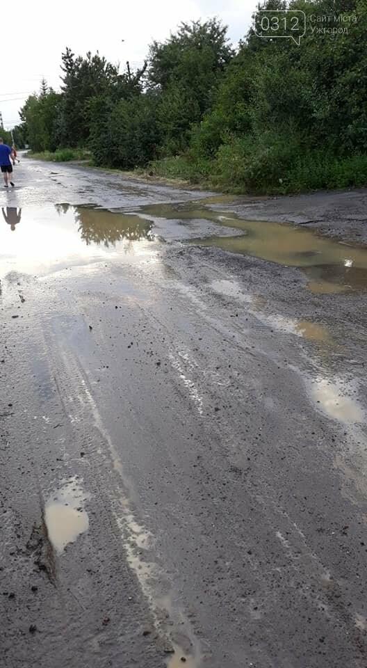 Ужгородці скаржаться на вулицю Лисенка, яка щоразу після дощу в жахливому стані (ФОТО, ВІДЕО), фото-1