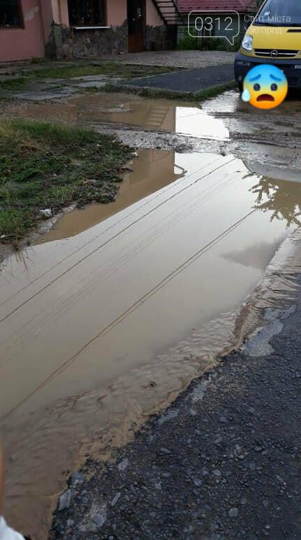 Ужгородці скаржаться на вулицю Лисенка, яка щоразу після дощу в жахливому стані (ФОТО, ВІДЕО), фото-2