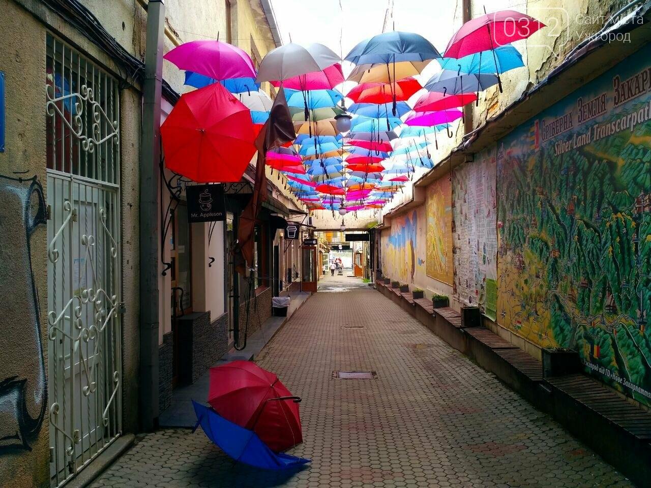 В Ужгороді невідомі вандали познущалися над алеєю парасоль у пасажі (ФОТО), фото-4