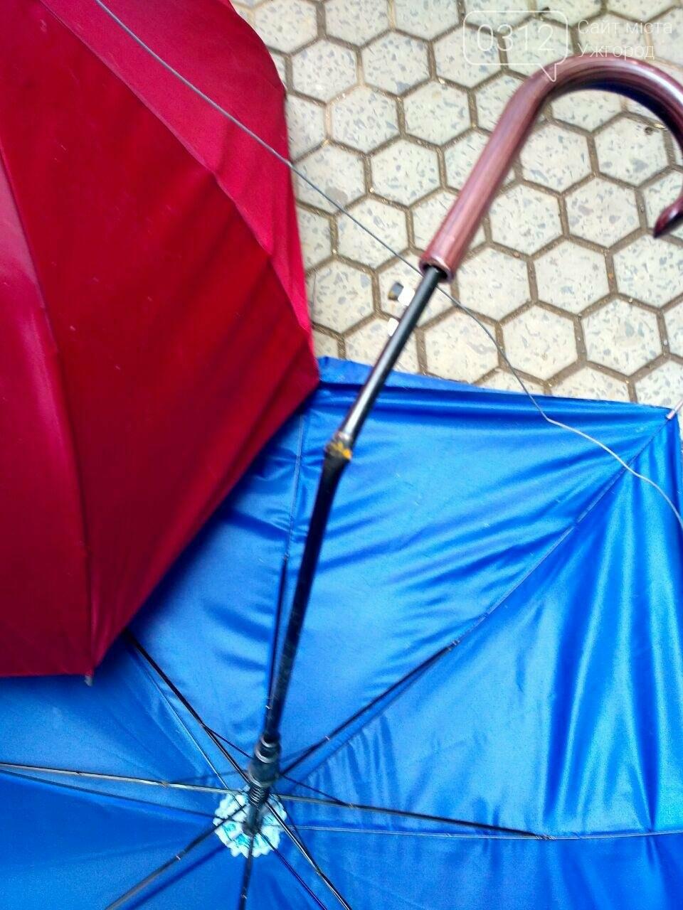 В Ужгороді невідомі вандали познущалися над алеєю парасоль у пасажі (ФОТО), фото-2