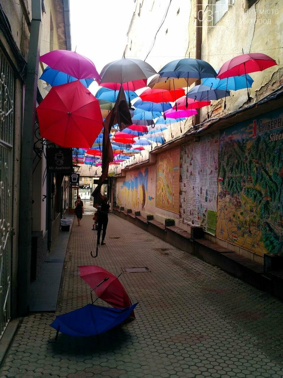 В Ужгороді невідомі вандали познущалися над алеєю парасоль у пасажі (ФОТО), фото-1